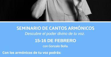 Poster Armónicos enero 2020