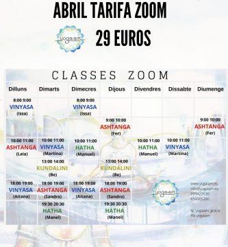 tarifa zoom 29 euros