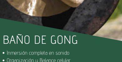 gong flier